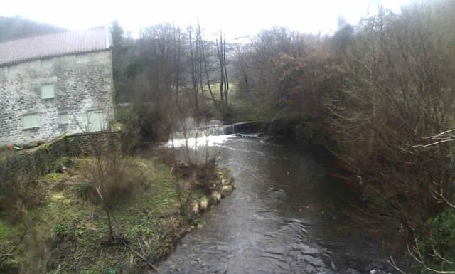15 river Hodge Beck