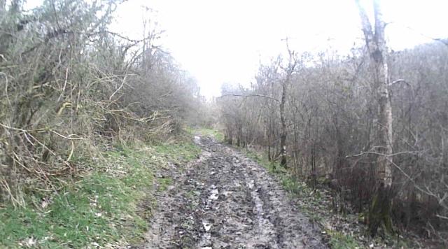 34 muddy path
