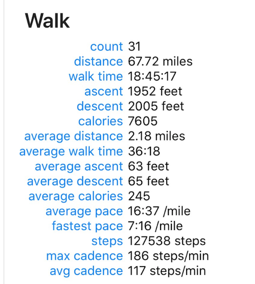 walk summary